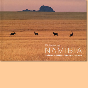 Picturesque Namibia