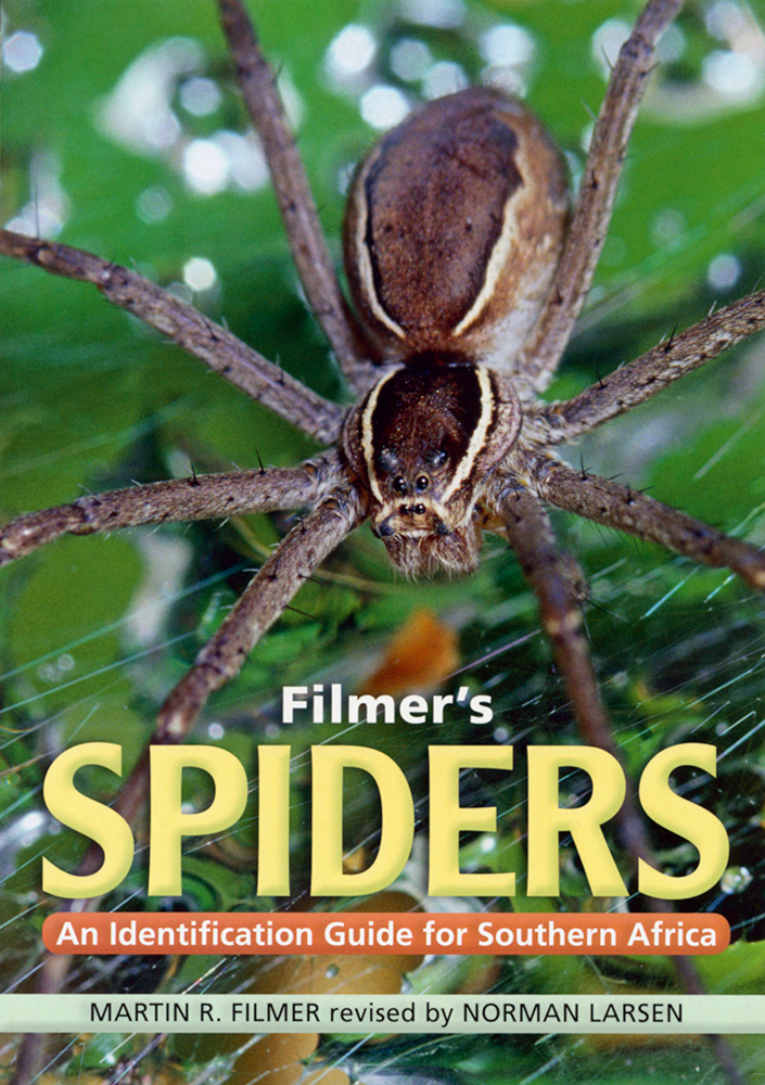 Filmer's Spiders. An Identification Guide For Southern Africa