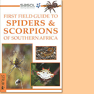 First Field Guide to Spiders and Scorpions of Southern Africa