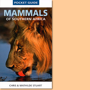 Mammals of Southern Africa Pocket Guide
