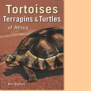 Tortoises, terrapins and turtles of Africa