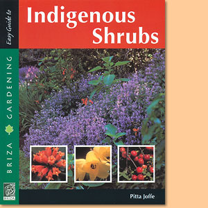 Easy Guide to Indigenous Shrubs