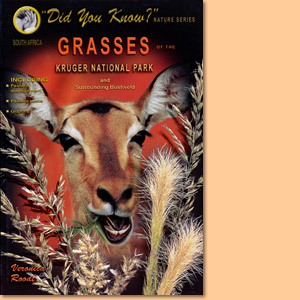 Grasses of the Kruger National Park and surrounding Bushveld