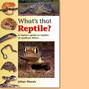 What's that Reptile? A starter's guide to reptils of southern Africa