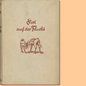 Drei auf der Flucht. Ein abenteuerlicher Roman aus Deutsch-Südwest