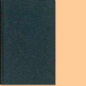 Die Deutsche Landnahme. Der südafrikanische Lederstrumpf, Band 2