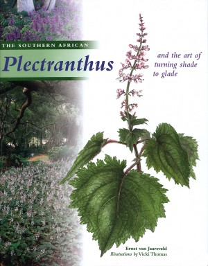 The southern African Plectranthus and the Art of Turning Shade to Glade