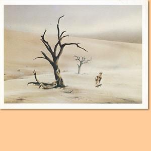Zwei Einladungskarten The Carke Gallery, Johannesburg zur Ausstellung von Doug Gray, 1987 mit Zeitungsausschnitten und Fotos