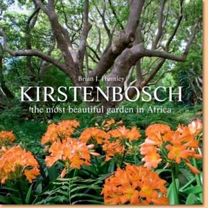 Kirstenbosch: The most beautiful garden in Africa