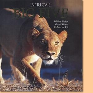 Africa's Big Five