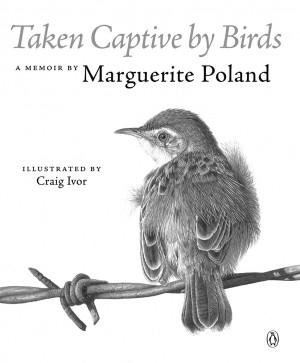 Taken captive by birds