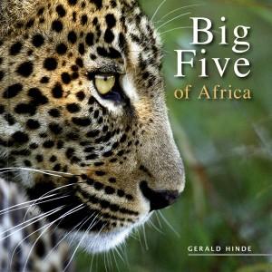 Big Five Of Africa