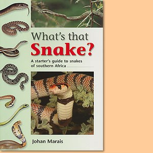 What's that Snake? A starter's guide to snakes of southern Africa
