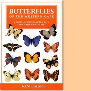 Butterflies of the Western Cape