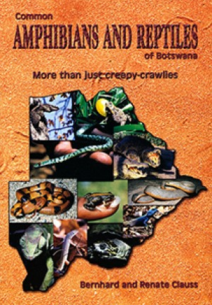Common Amphibians and Reptiles of Botswana