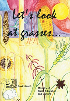 Let's look at Grasses. Guide to the common grasses of Namibia and their usage