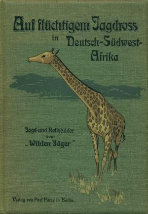 Auf flüchtigem Jagdross in Deutsch-Südwest-Afrika