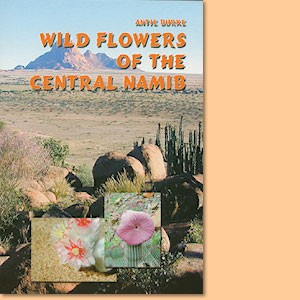 Wild Flowers of the Central Namib