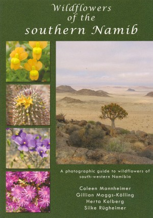 Wildflowers of the southern Namib