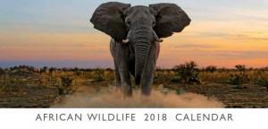 Fotokalender Nambia Wildlife
