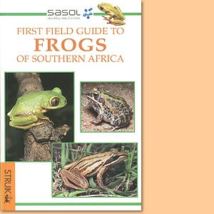 First Field Guide to Frogs of Southern Africa