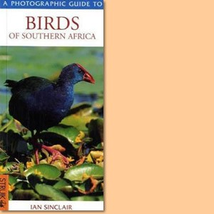 A Photographic Guide to Birds of Southern Africa