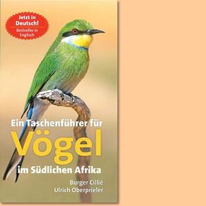 Ein Taschenführer für Vögel im südlichen Afrika
