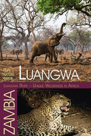 Luangwa River: Unique Wilderness in Africa