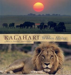 Kalahari. Wildes Afrika