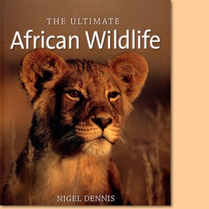 The Ultimate African Wildlife