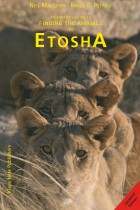 An Expert's Guide to Finding the Animals in Etosha