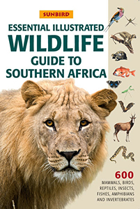 Essential illustrated guide to Southern African Wildlife