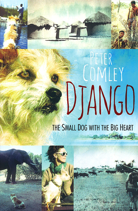 Django  The small dog with the big heart, by Peter Comley