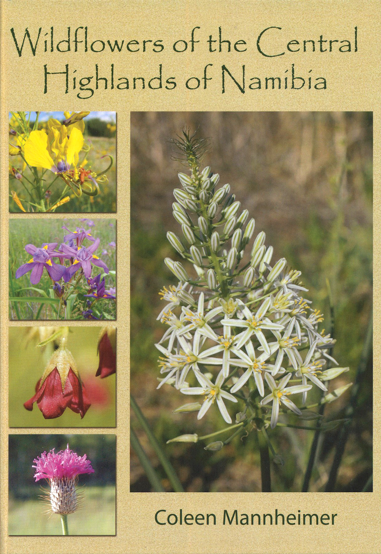 Wildflowers of the Central Highlands of Namibia, by Coleen